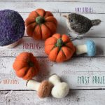 ideas for beginner needle felting projects