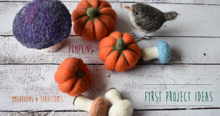 Needle Felting for Beginners – First Project Ideas